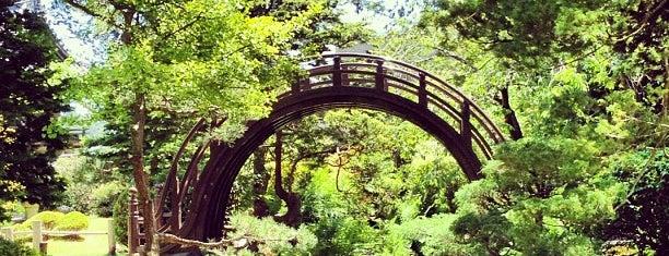 Japanese Tea Garden is one of Golden tips for the Golden State.
