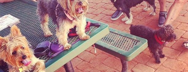 Sedona Dog Park is one of Arizona.