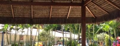 The British Country Club is one of Lugares legais em Recife e adjacências.