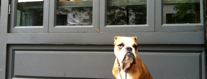 The Otheroom is one of The New Yorkers: Pup Life.