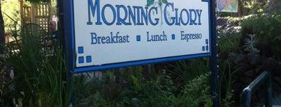 Morning Glory is one of Ashland!.