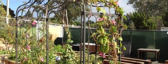 PDL Learning Gardens (PARK DALE LANE) is one of Lugares favoritos de @49ergirl.