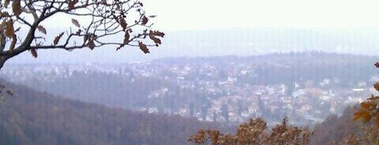 MTB Trail (vyhlídka Šance) is one of MTB v Česku.
