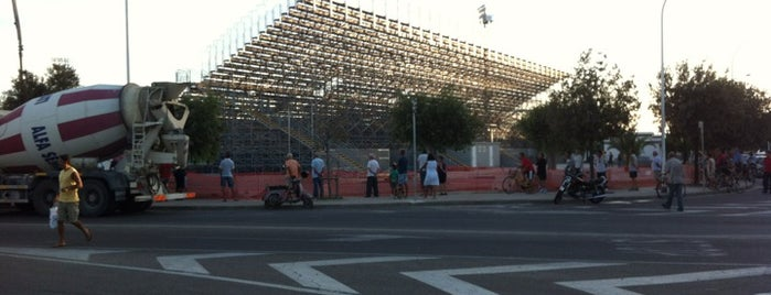 Is Arenas Stadium is one of Lega Italia Serie A TIM Stadium (Season 2013-2014).