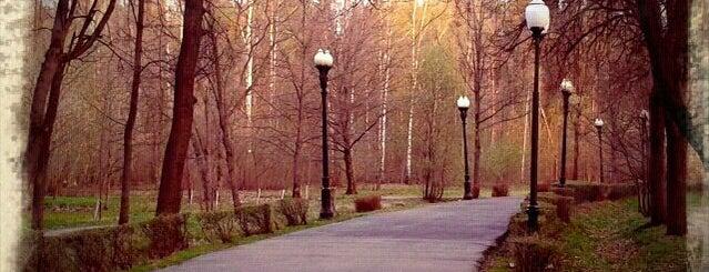 Izmaylovsky Park is one of Сады.