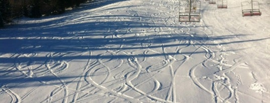 Crystal Mountain Ski is one of BC Ski Resorts.