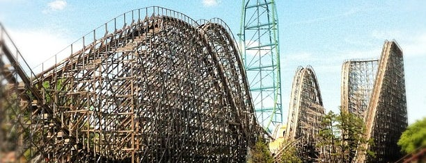 National Rollercoaster Roundup