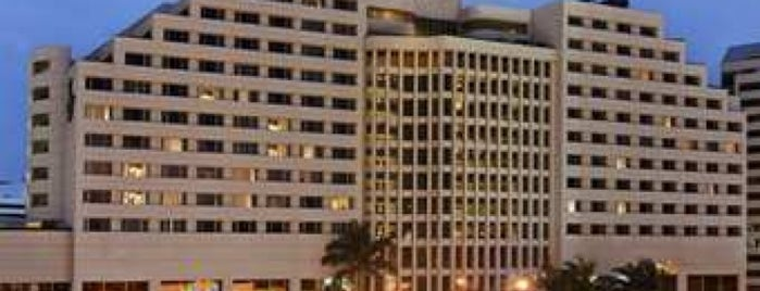 Hilton is one of Rod : понравившиеся места.