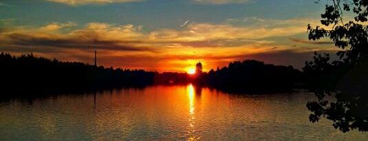 Podleský rybník is one of Travel - CR.
