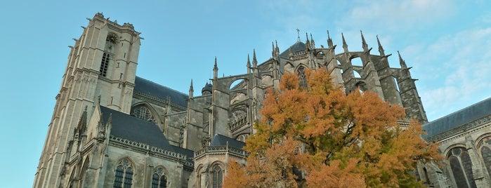 Cathédrale Saint-Julien is one of Bienvenue en France !.