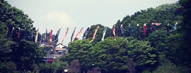 四季の森公園 is one of yoshikazu's Liked Places.