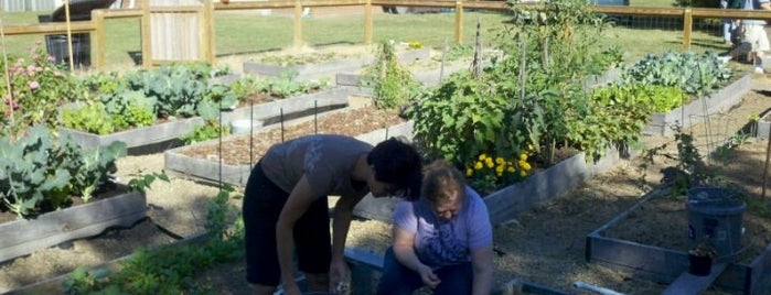 Vineyard Community Garden is one of Nash Life.