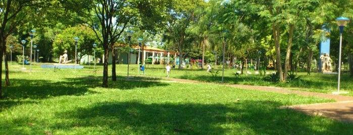 Parque Ecológico Maurilio Biagi is one of Conhecer Ribeirão.