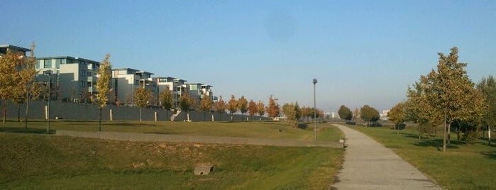 Bonifatiuspark is one of Favorite Great Outdoors.