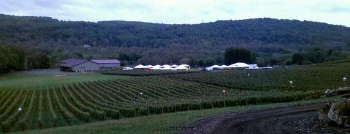 Alba Vineyard is one of Local Wineries/Vineyards.