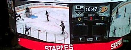 스테이플스센터 is one of NHL arenas.