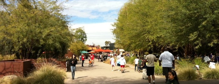 Phoenix Zoo is one of Must Visit - Phoenix / Valley.