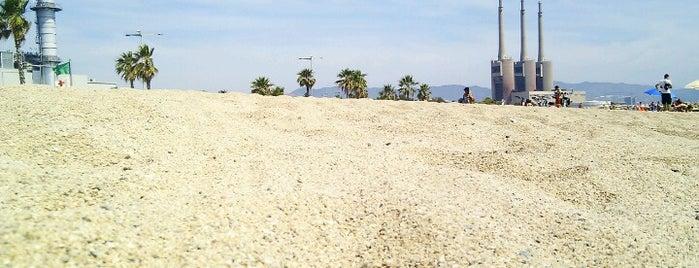 Praia do Litoral is one of Playas de Barcelona.