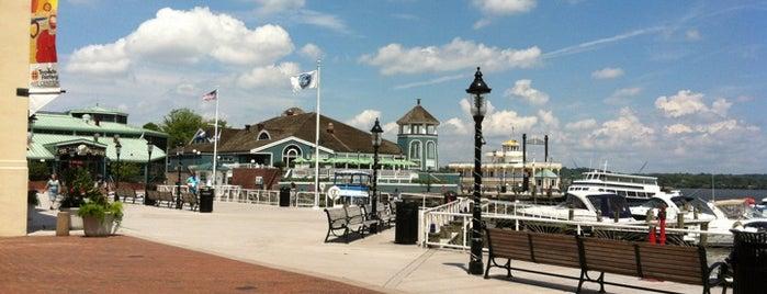 Potomac Riverboat Company is one of Alexandria, VA.