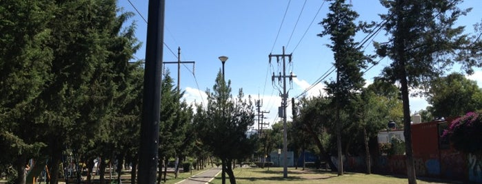 Parque Los Olivos is one of Lieux qui ont plu à Hugo.