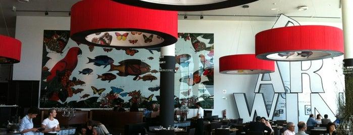 Darwin's Café is one of Lisboa ... restaurantes.