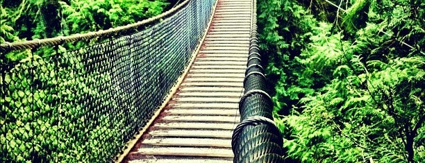 Lynn Canyon Suspension Bridge is one of World Heritage Sites List.