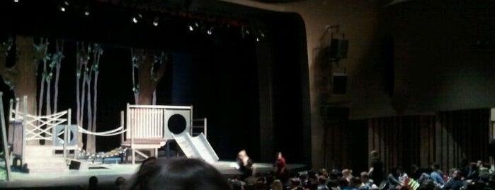 Rupel Jones Theatre is one of Senior Bucket List.