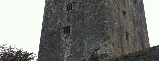 Blarney Castle is one of Take Me.