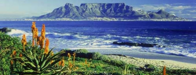 Table Mountain National Park is one of Cape Town Do.