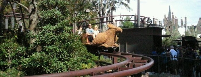 Flight of the Hippogriff is one of My vacation @Orlando.