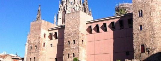 Plaça Nova is one of Barcelona.