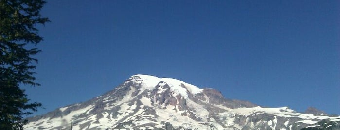 Mount Rainier National Park is one of Lost in Seattle.