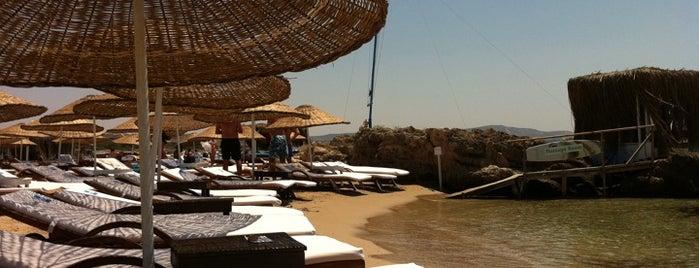 Fun Beach Club is one of Çeşme ve Deniz.