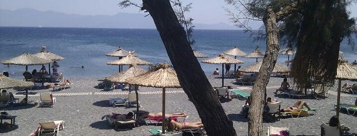 Psalidi Beach is one of Explore Kos.