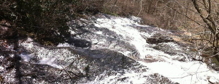 Top of Amicalola Falls is one of Tempat yang Disimpan Tye.