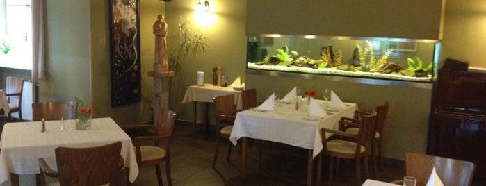 Restaurace Vila Primavesi is one of Olomouc.