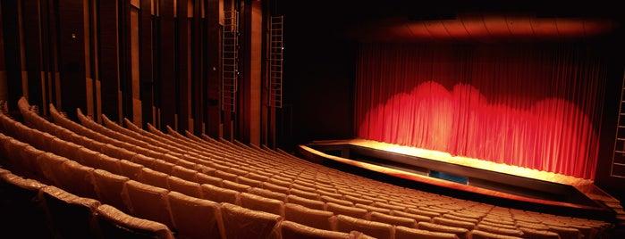 Denizli Devlet Tiyatrosu is one of Locais curtidos por UFuK•ॐ.