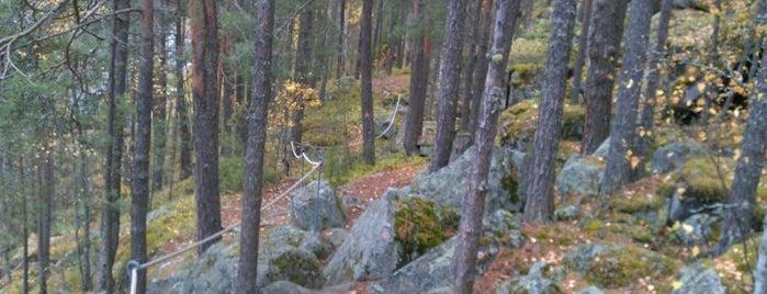 Kanavuoren luontopolku is one of Orte, die mikko gefallen.