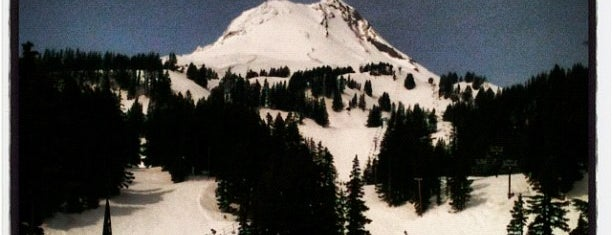Mt. Hood Meadows Ski Resort is one of My favs.