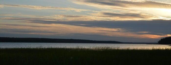 Нахимовское озеро is one of Lieux qui ont plu à Натуля.