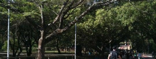 Parque Ibirapuera is one of 48 horas em Sampa. O que você recomendaria fazer?.