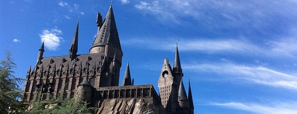 The Wizarding World Of Harry Potter - Hogsmeade is one of Guide to Orlando's best spots.