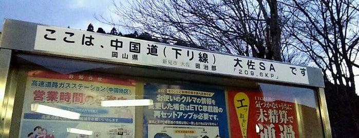 大佐SA (下り) is one of Lieux qui ont plu à Shigeo.