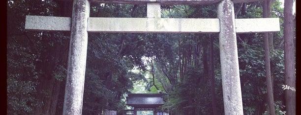 砥鹿神社 is one of 愛知に旅行したらココに行く!.