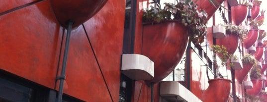 ORGANIC BUILDING オーガニックビル is one of JPN.