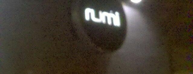 Rumi is one of Noche BAIRES.