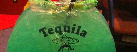 Tequila Mockingbird is one of Ocean City Weekends.