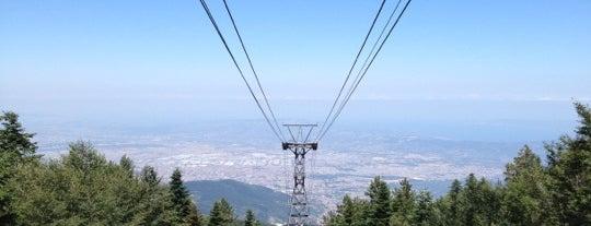Sarıalan Teleferik İstasyonu is one of สถานที่ที่ Baha ถูกใจ.