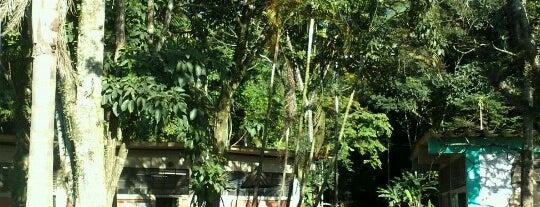 Parque Santo Dias is one of Parques em SP.