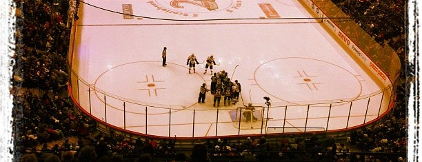 Canadian Tire Centre is one of NHL HOCKEY ARENAS.